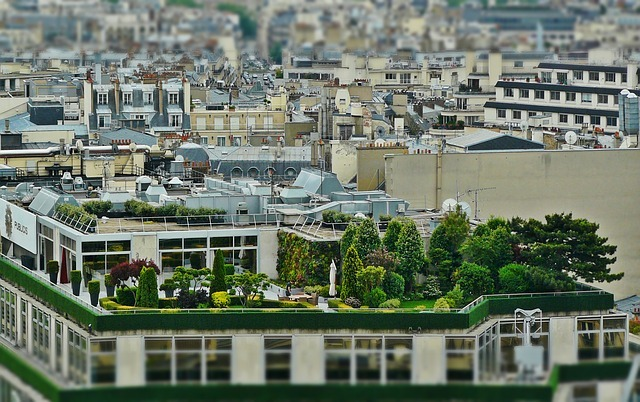 roof terrace, roof garden, architecture