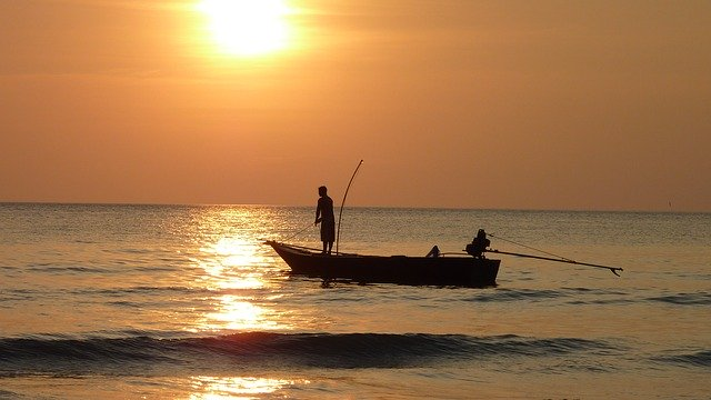 fisherman, fish, fishing boat