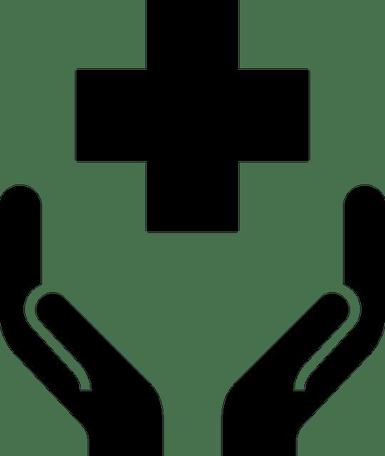 health, icon, public health